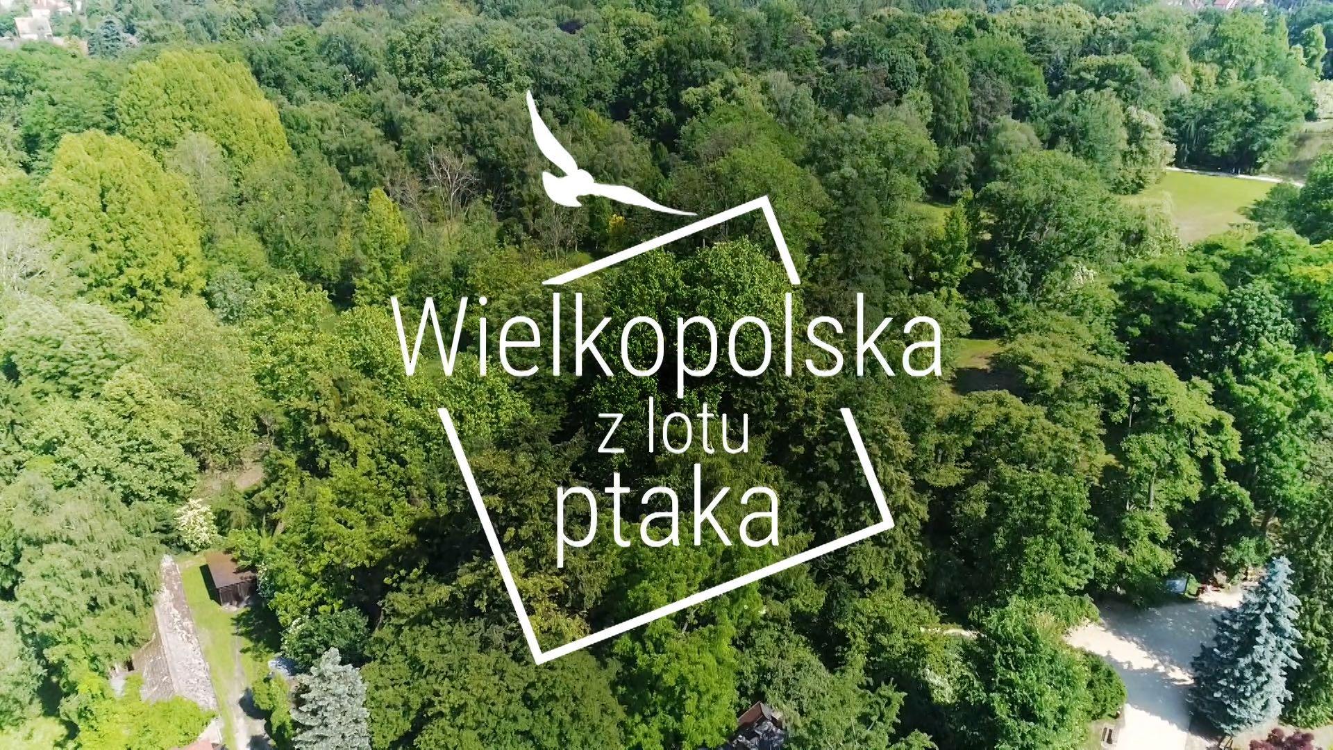 """""""Wielkopolska z lotu ptaka"""" - czołówka"""